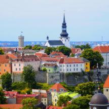 Прачынайся, дзейнічай, змяняй: трэнінг у Эстоніі
