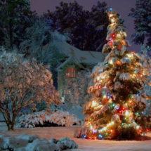 Новый год 2019. 7 идей, где отметить новогоднюю ночь