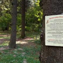 """В лесопарке """"Медвежино"""" продолжается активность для его сохранения"""