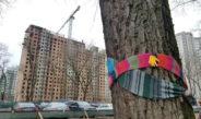 Благодаря общественной активности Грушевский сквер обещают сохранить